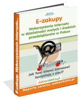Poradnik: Wykorzystanie Internetu w działalności małych i średnich przedsiębiorstw w Polsce - ebook