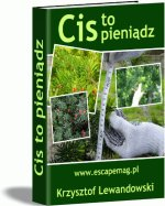 Cis to pieniądz (ebook)