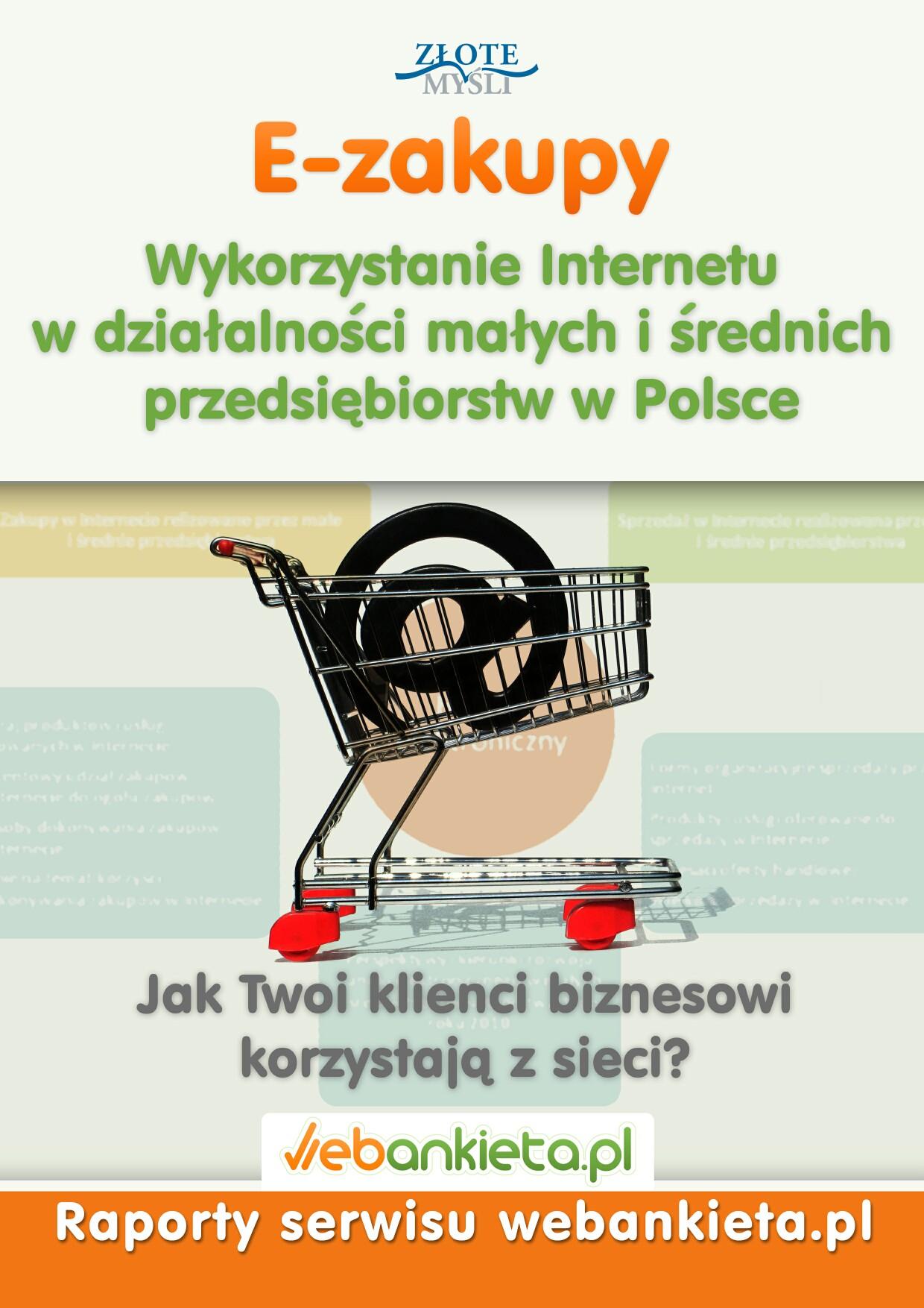 webankieta.pl: Wykorzystanie Internetu w działalności małych i średnich przedsiębiorstw w Polsce - okładka